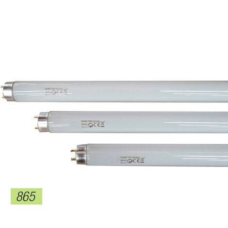 EDM Tubo fluorescente 18w trifosforo 865k edm