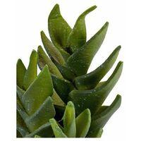 Ibergarden Cactus Plástico Cactus (10,5 x 21 x 10,5 cm)