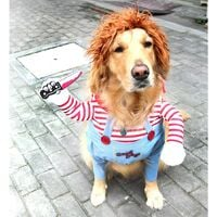 Dog Costume Animal Party Costume Cosplay Pet Costume L A