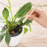 3 garden tools, small shovel rake and plants in wood-shaped wooden handle, child safety tools indoor and outdoor garden (