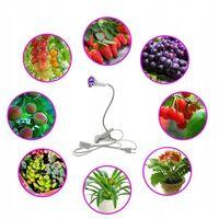 LED Vegetable Lighting, 20W Face Lighting, Face and Beauty LED Vegetable Lighting, 20W Filling Light, 1 Head
