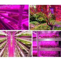 LED Plant Growth Light, Intelligent Handmade Water Sweep Waterproof Plant Light Band 1 Meter Growth LED Growth Light Strip, 1 meter