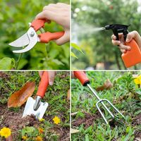 Gardening Tools, Adult Stainless Steel Gardening Tool, Ergonomic Handles, Carrying Bag, Gardening Gloves, Watering Box, Rope - 10 Rooms