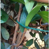 13CM green garden cable tie gardening cable [high-quality imported materials can be reused (20 cable ties)