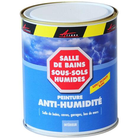 Peinture anti humidité mur humide salle de bain - ARCASCREEN - ARCANE INDUSTRIES - Blanc - 0.75 L (jusqu a 3m²)