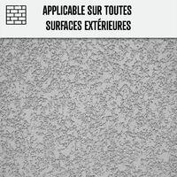 Fongicide ultra concentré pour toiture murs façade terrasse Antimousse Élimine aussi algues et lichens - ANTI-DÉPÔT VERT - ARCANE INDUSTRIES - Liquide- Transparent - 1 L (jusqu a 250m²)