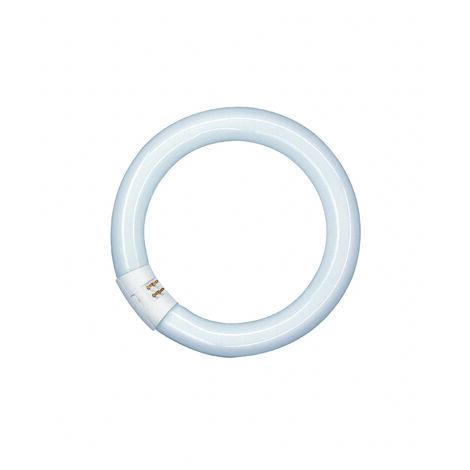 Tubo Fluorescente Circular 32W 4000K Osram