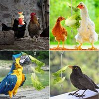 Hanging chicken feeder chicken parrot hanging stainless steel bird feeder chicken feeder toy