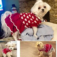 SalemHms Dog Sweater Dresses for Small Dog, Xmas Christmas cat Puppy Sweater