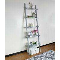 5 Tier Grey Leaning Ladder Shelf