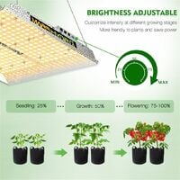 Mars Hydro TS 1000W LED Grow Light + 2'x2' Indoor Tent Kits Combo Carbon Filter - Silver