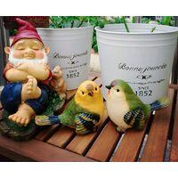 Cut Birds Garden Statue Funny Outdoor Garden Statue - Sculpture Ornaments Decor Set of 2 styles Yellow / Green