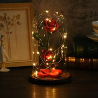 Beauty and the Beast Rose, Rose LED Light Glass Rose Glass Dome and Red Silk Rose Decoration Valentine's Day Birthday Gift Decoration
