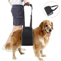 Dog Support Harness Auxiliary Belt Lifting for Elderly Disabled Injured Dogs Cinine Lifting Harness for Climbing and Descending Stairs Entering and Exiting Vehicles Black L