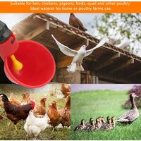 SOEKAVIA 10 PCS Chicken Waterer Automatic Plastic Chicken Waterer Poultry Waterer Kit Drinking Water Dispenser Bowls Water Supply Systems for Bird Quail Pigeon Chicken