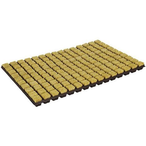 Plateau 150 Cubes laine de roche 2cm - Grodan , bouturage , germination