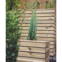 Forest Linear Long Wooden Garden Planter 4'x1' (1.2x0.4m)