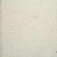 Ubbink Feutre géotextile de protection blanc 5 x 2 m 200 g/m² 1331960