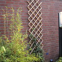 Nature Palissade de jardin 70 x 180 cm Bambou