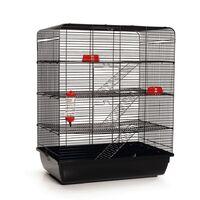 Beeztees Cage à rat Remy Noir 58 x 38 x 71 cm 266815
