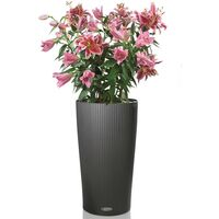 LECHUZA Jardinière Cilindro Color 32 ALL-IN-ONE Ardoise 13953