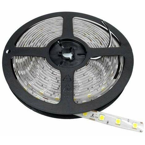 Ruban LED 5m étanche 60LED/m 14,4W/m - Blanc du Jour 6000K