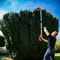 20V Li-Ion Cordless Battery Pole Hedge Trimmer with adjustable head and 41cm cutting length