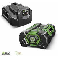 Pack élagage entretien arbres et haies avec moteur chargeur batterie 56v Egopower - Gris