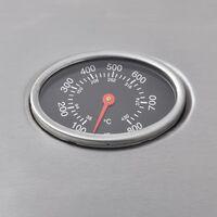 vidaXL Barbacoa grill de gas 4+1 quemadores plateada - Plateado