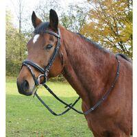 Briglia Articoli da equitazione Briglia inglese modello Limerick ottima qualità considerata uno dei bestseller