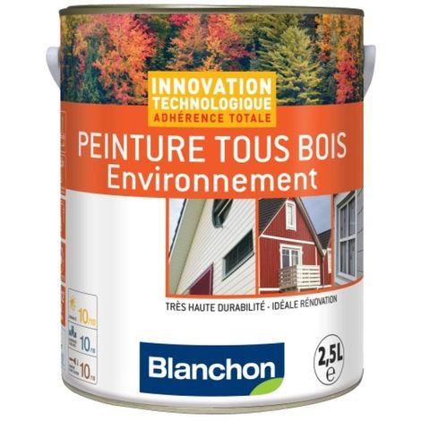 Peinture microporeuse hydrofuge Tous Bois Environnement, gris anthracite 7016 2,5l - Gris anthracite RAL 7016