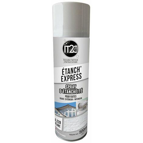 It2c Etanch Express Blanc 500ml - IT2C