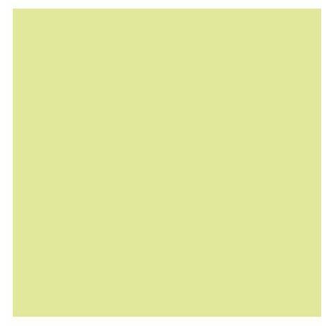 Peint Appuis Fenetr T Pierr 1l - OXI