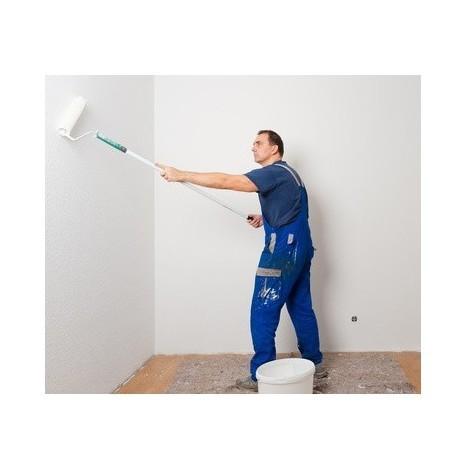 Traitement préventif et curatif des plâtres humides et moisis - 750 ml Incolore