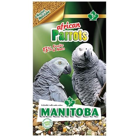 African Parrots Manitoba   2 kg