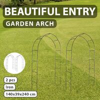 Garden Arch 2 pcs Climbing Plants - Green