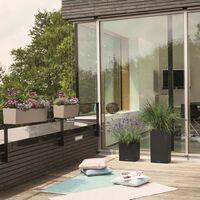 LECHUZA Planter BALCONERA Color 50 ALL-IN-ONE Beige - Beige