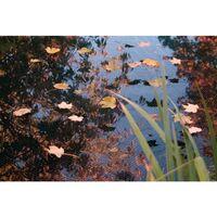 Ubbink Pond Cover Net PE 3x4 m 1371341