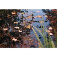 Ubbink Pond Cover Net PE 4x6 m 1371344