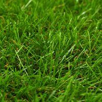 vidaXL Artificial Grass 0.5x5 m/40 mm Green - Green