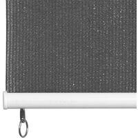 vidaXL Outdoor Roller Blind 220x230 cm Anthracite - Anthracite