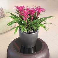 LECHUZA Planter Classico 28 LS ALL-IN-ONE Charcoal Metallic 16043 - Grey