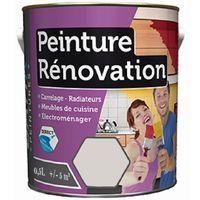 Peinture de rénovation multi-supports 0,5L   Couleur: Iceberg