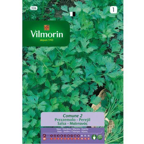 Semillas Vilmorin PEREJIL COMÚN - 14 gr
