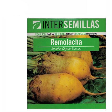Semillas de REMOLACHA FORRAJERA AMARILLA Intersemillas 250g
