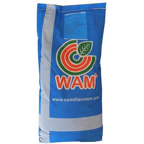 Semillas de Césped Ray Grass Italiano WAM - Saco 5 kg