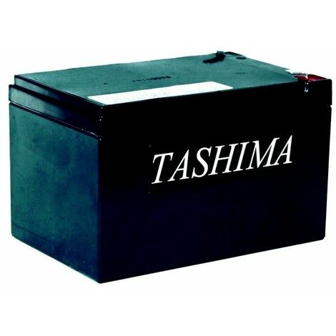 Batterie tracteur tondeuse Tashima 12V 14A