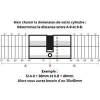 THIRARD - Cylindre de serrure clé modifiable, 30x30mm, anti-arrachement, anti-perçage, nickel, 2x3 clés
