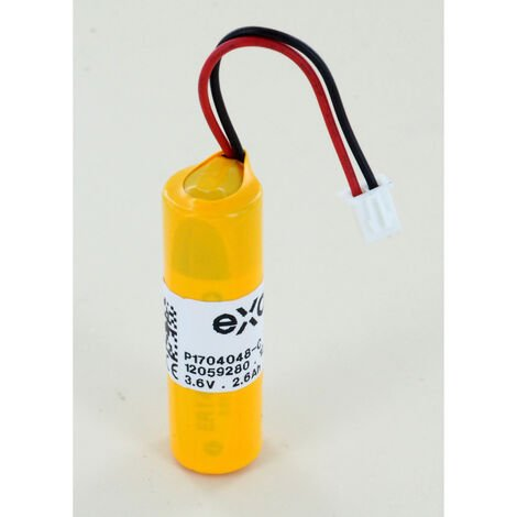 Pile 3.6V lithium Blue battery pour Analyseur de piscine Blue connect plus