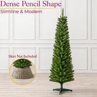 Spruce Pencil Tree (5ft)